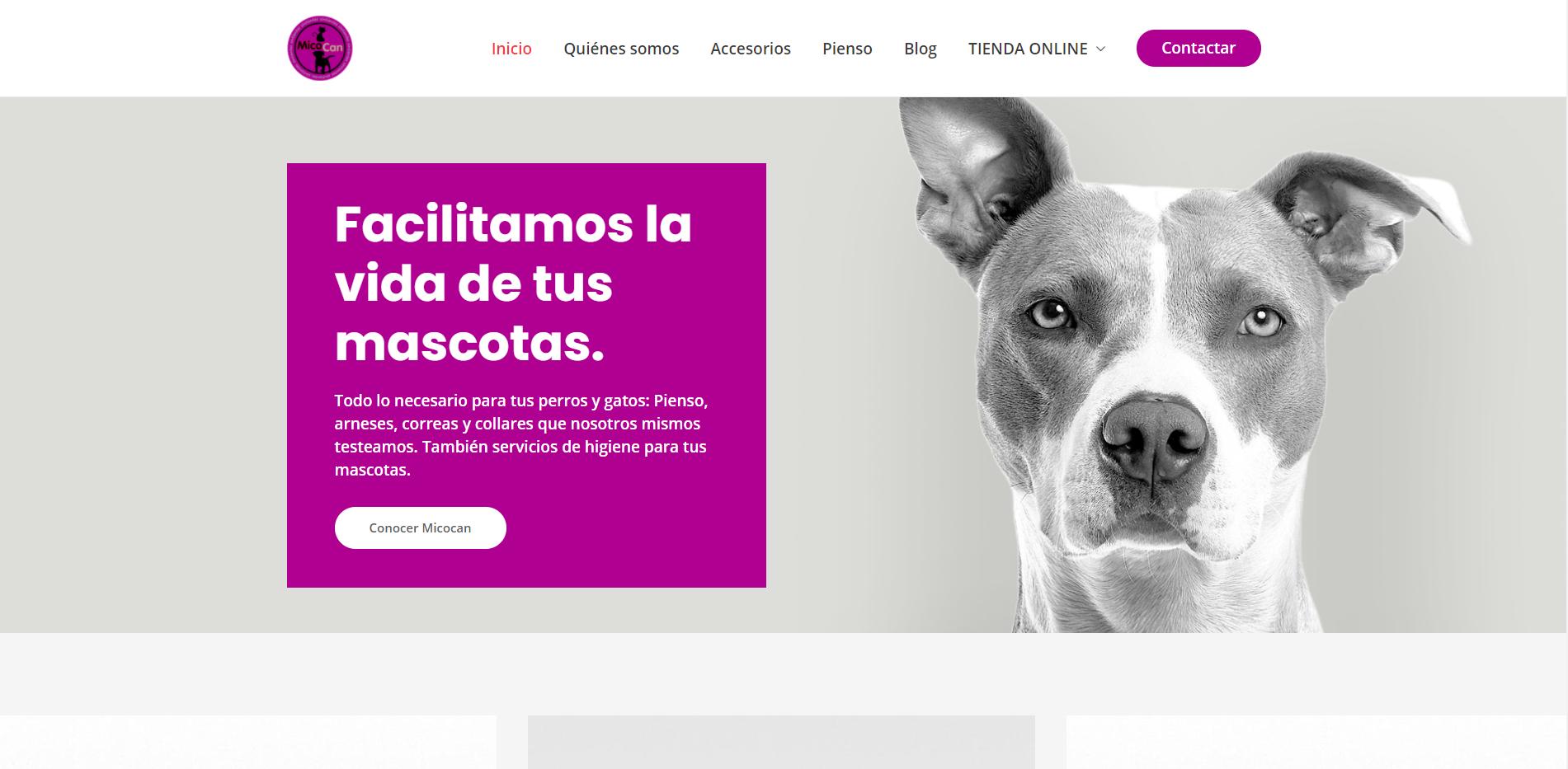 Página web Micocan - Creación de Sitios Web