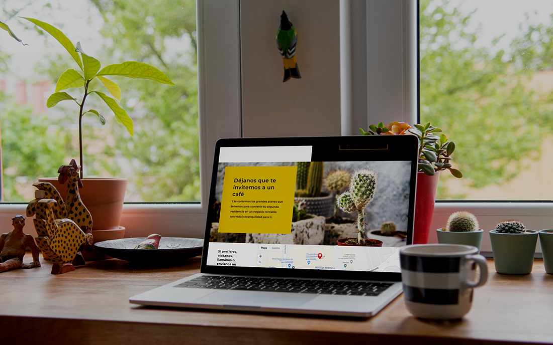 Cactus Guest Sitio Web - Digital Strategy