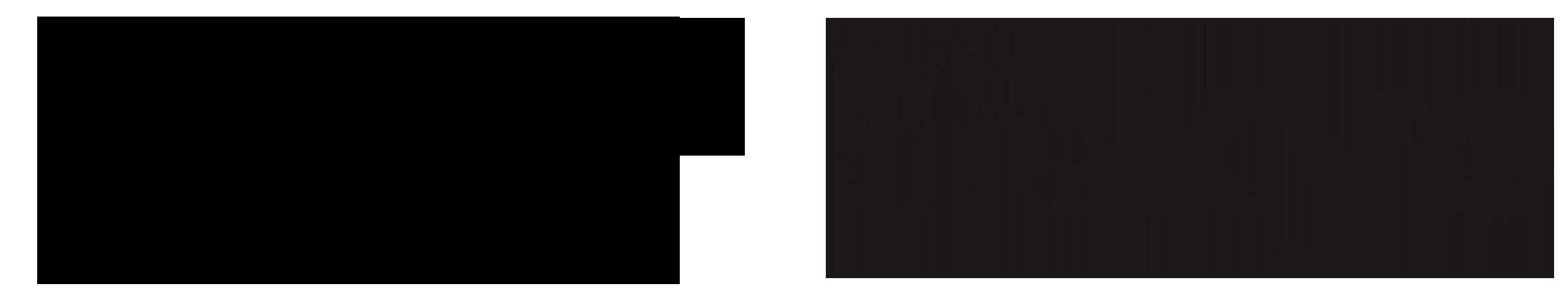 PROMOKANT promotions logo