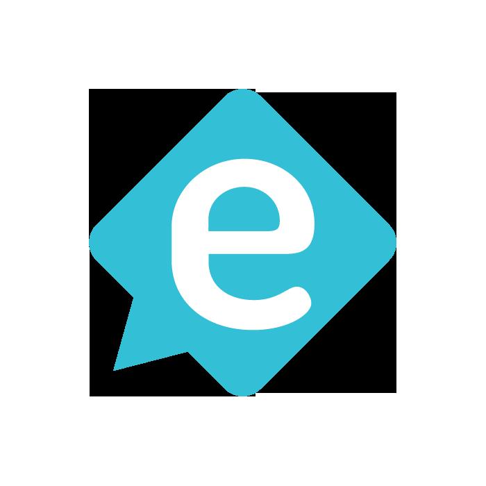 Everzocial | Digital Marketing Agency logo