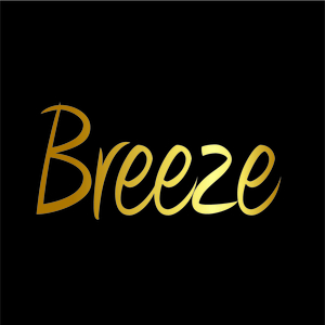 Breeze Development - Website Design & Development logo