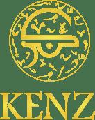 Kenz Logo & Website - Branding & Positioning