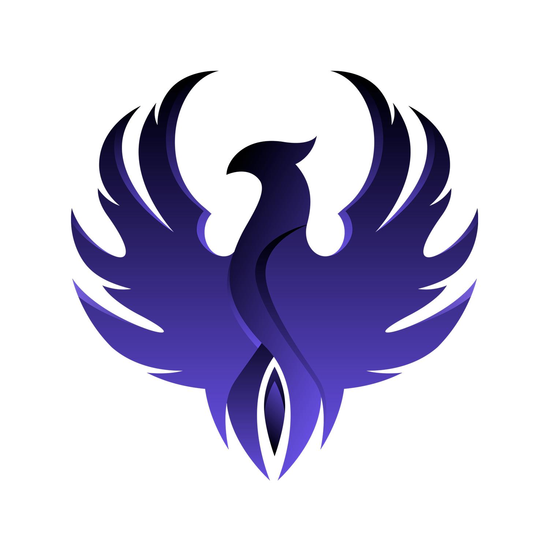 Khochora Software Limited logo