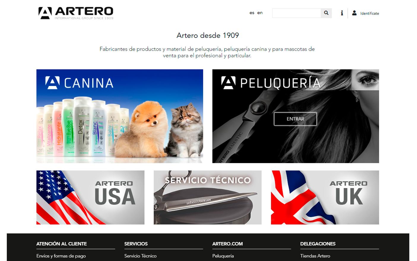 Artero - Creación de Sitios Web
