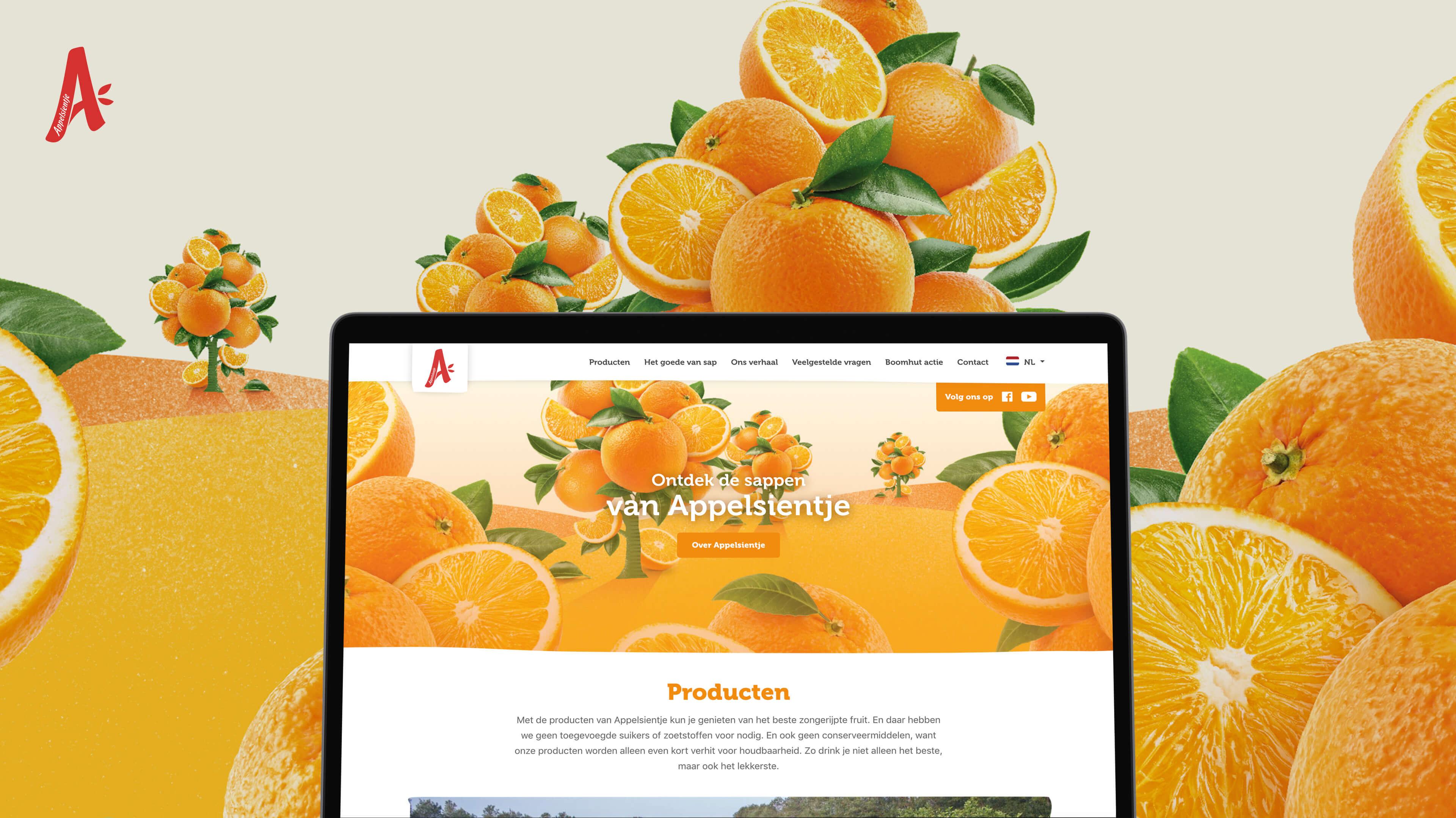 Branding & Websites Riedel - Website Creatie