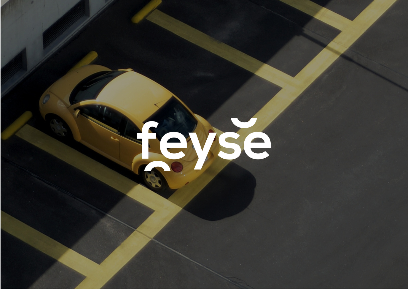 Feyse