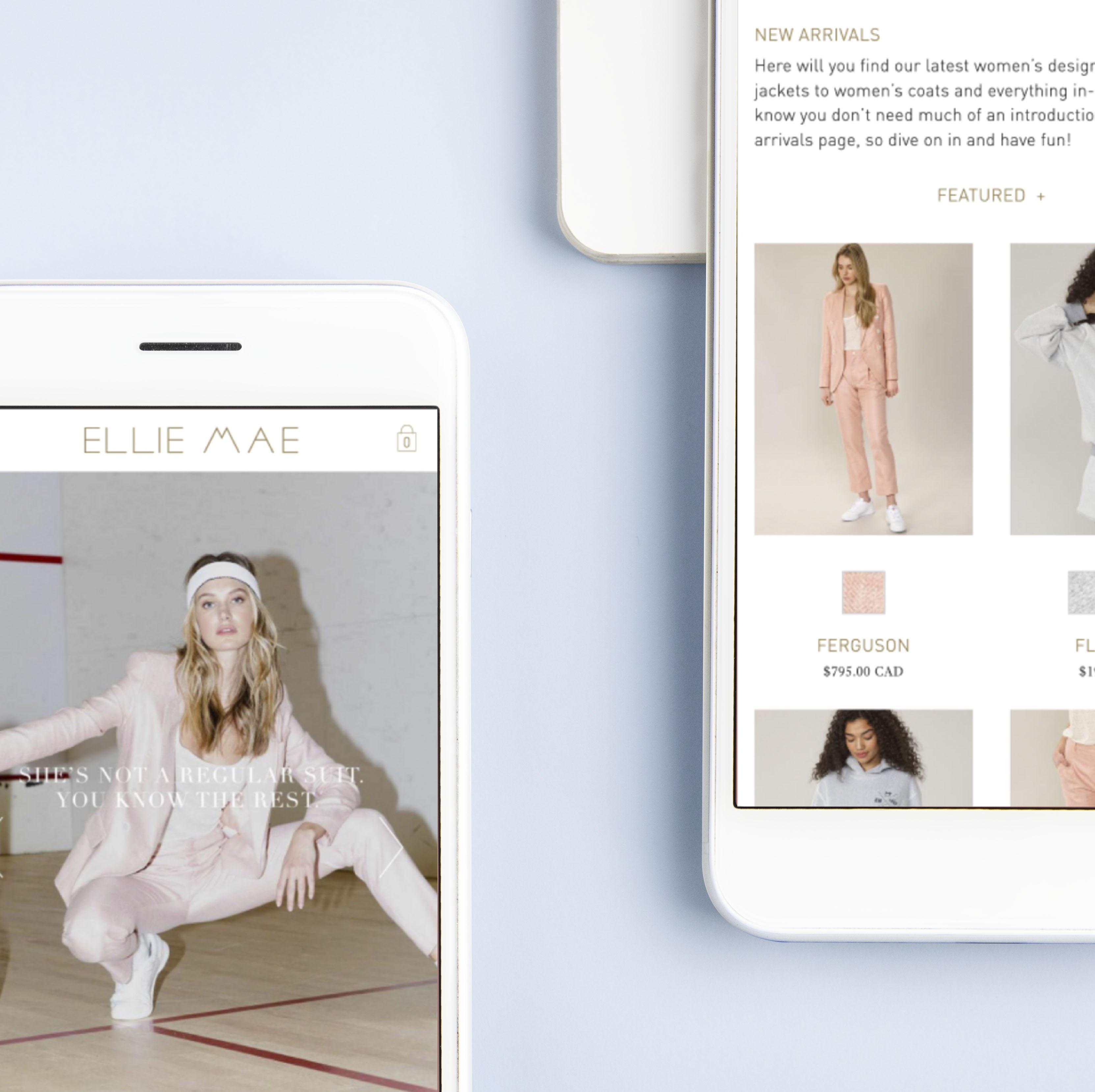 eCommerce development for Ellie Mae - E-commerce