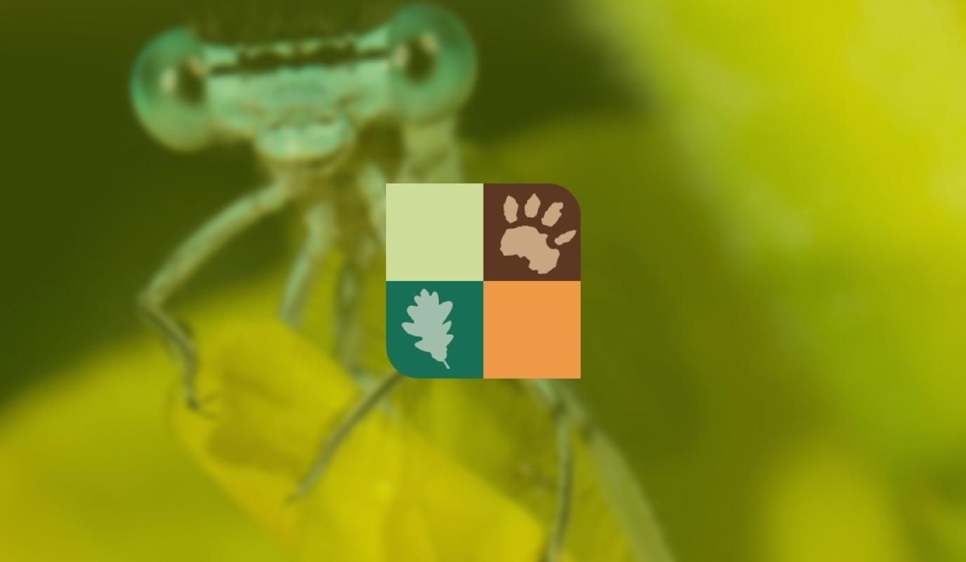 Landschap Overijssel: Website - Website Creatie