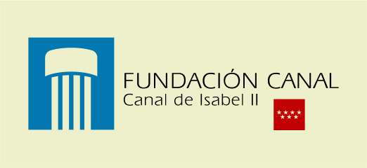 Estrategia digital para Fundación Canal - Estrategia digital