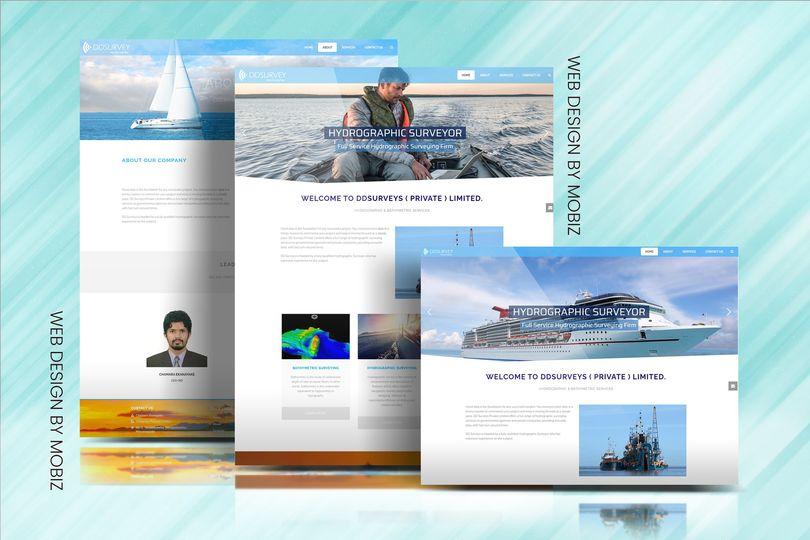 DDSurveys Pvt Ltd - Website Creation