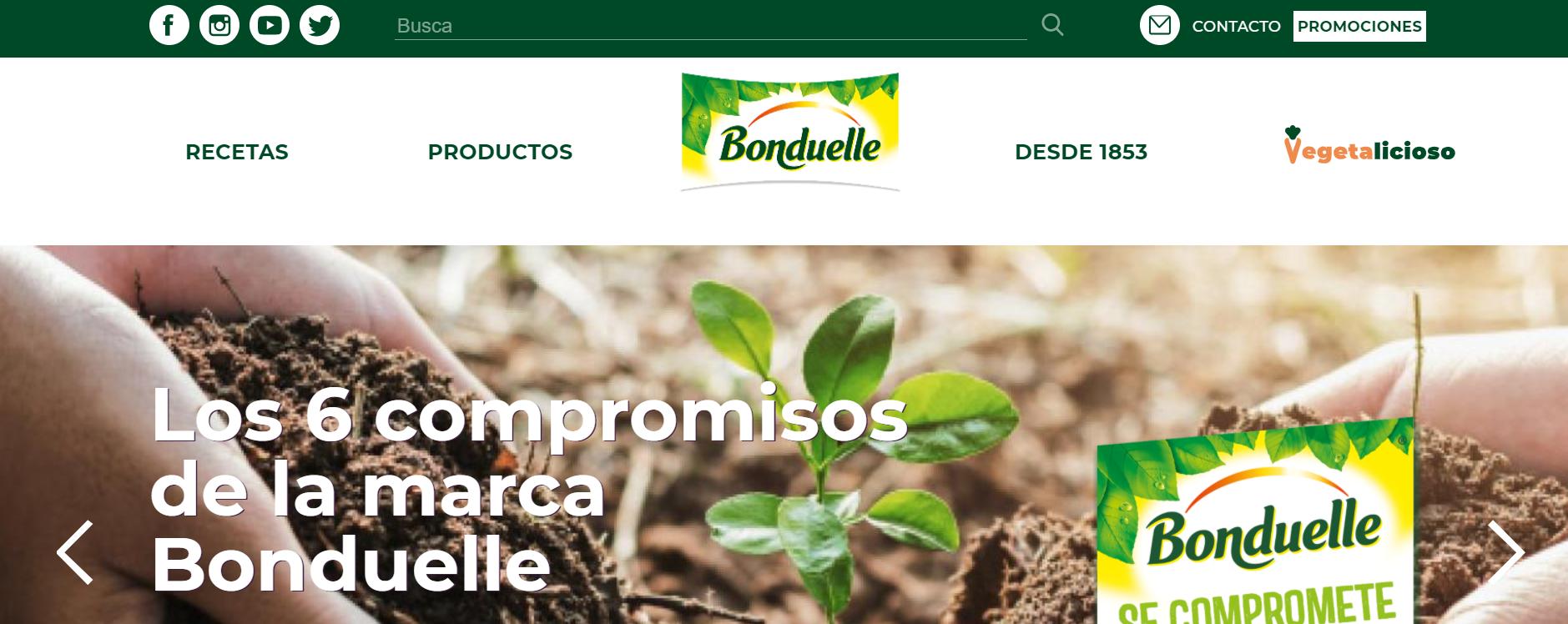 SEO, SEM, Redes Sociales y Diseño Bonduelle - Creación de Sitios Web
