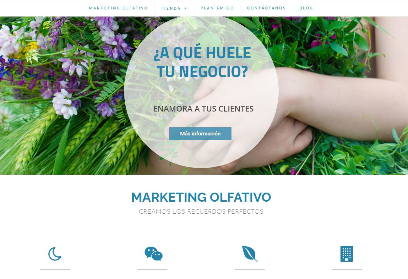 Solución integral - Creación de Sitios Web