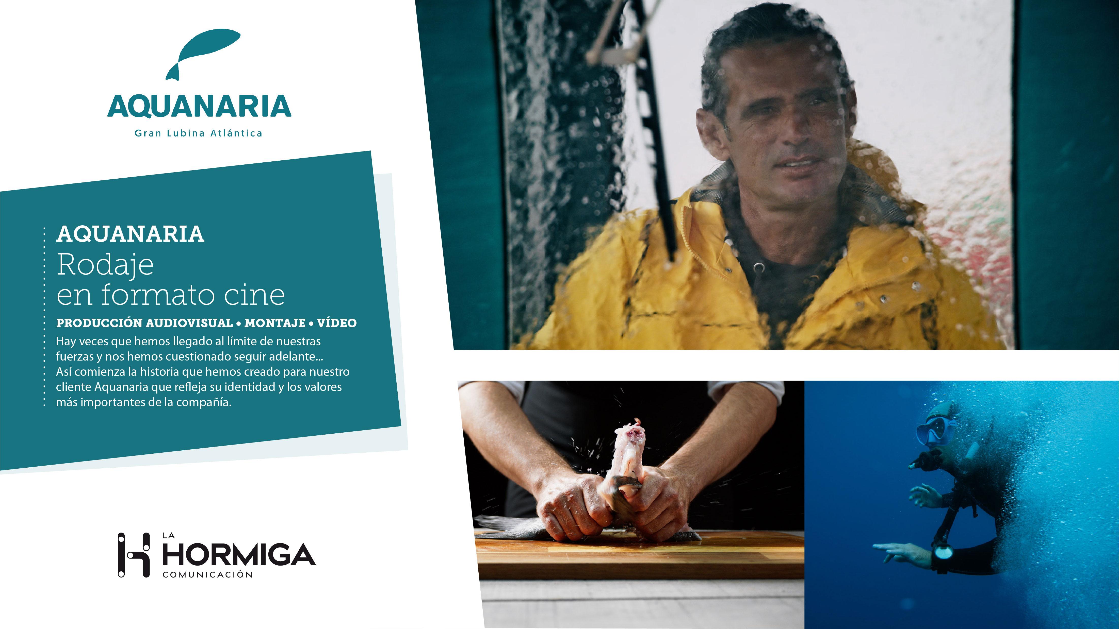 Rodaje  Aquanaria - Estrategia digital